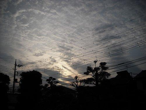 20090404-01.jpg