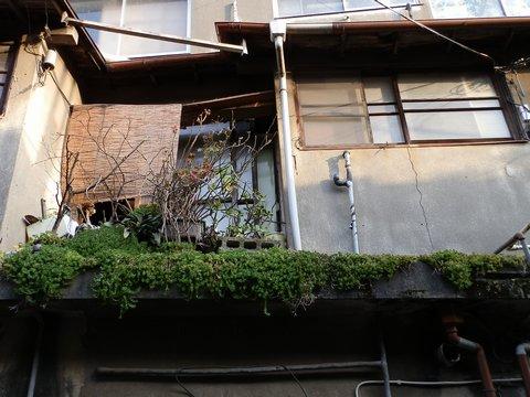 2012-03-20-225.jpg