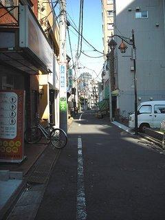 sugi001-37.jpg